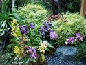 gardenflowersplants