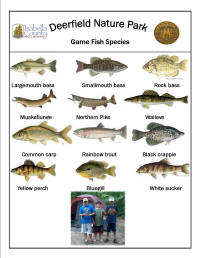 Fish species found at Isabella County Deerfield Nature Park