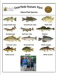 preview image of first page Fish Species at Deerfield Nature Park