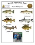 preview image of first page Fish Species at Herrick Recreation Area