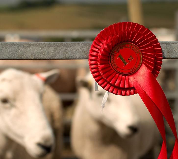county fair farm awards