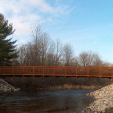 DNP Bridge