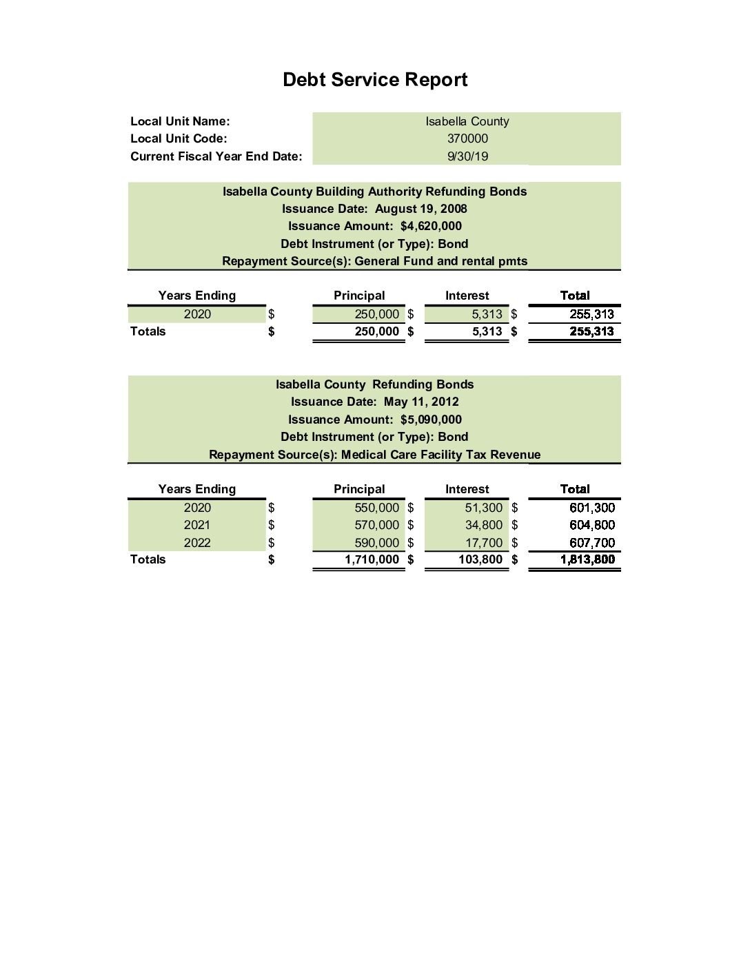 preview image of first page Debt Service Report