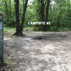 Deerfield Campsite #5