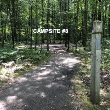 Deerfield Campsite #8