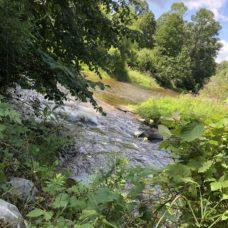 Deerfield Chippewa River